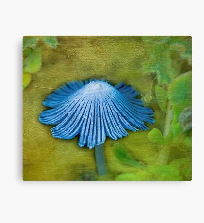 """""""Toadstool In Blue"""" Canvas Print"""
