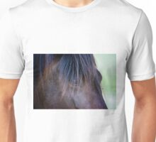 Spanish Royalty - The Paso Fino Unisex T-Shirt