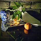 China and mandarin by andreisky