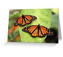 Monarch Twins Greeting Card