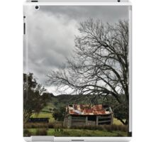 Indigo Valley iPad Case/Skin