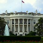 The White House by Chuck Chisler