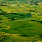 Palouse Spring by DawsonImages