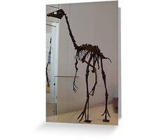 Super Ornithomimus Greeting Card