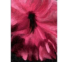 LAST DANCE!!!!/////////ABSTRACT  Photographic Print