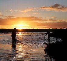 Bait Fishing Sunrise by Shannon Rogers
