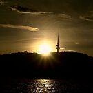Black Mountain Sunset ... ACT ~ Australia by Rosalie Dale