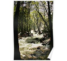 Trail to Bridal Veil Poster