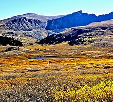 Guanella Pass Summit Lake and Colorado Fall Colors by Amy McDaniel