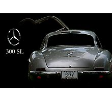 Gullwing Photographic Print