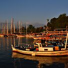 Fethiye Harbour by Peter Hammer