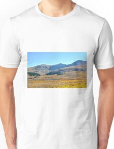 Colorado Fall Colors at Mountain Lake near Georgetown Unisex T-Shirt