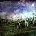 Moonrise Over the Vines by Margi