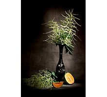 Astilbe with Cantaloupe Still Life  Photographic Print