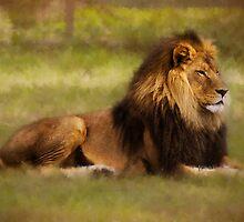 The King by BoB Davis