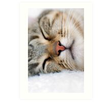SLEEPING Art Print