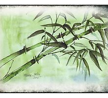 Stems of bamboo by Maree  Clarkson