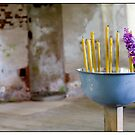 Vidzeme Candles, Vidzeme, Latvia. (2010) by Madeleine Marx-Bentley
