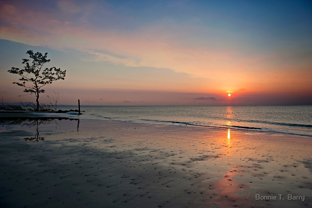 Serenity at Sunrise  by Bonnie T.  Barry