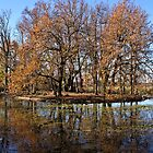 Winter on Lake Wendouree by Kristina K