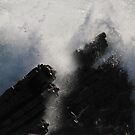Ocean Spray by bared