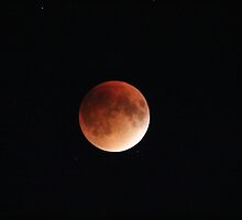Blood Moon Super Moon Lunar Eclipse with Stars by hummingbirds