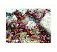 Red Crabs at Sea Art Print