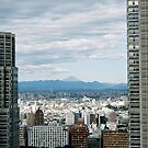 Fuji-San Cityscape  by David Bath
