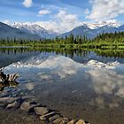 Vermillion Lakes, Banff, Alberta, Canada by Teresa Zieba