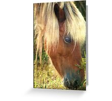 Beautiful blond Greeting Card