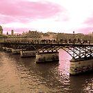 Parisian Mosaic - Piece 16 - Pink Sky Above The Ponts des Arts by Igor Shrayer