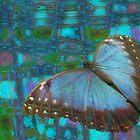 Butterfly Dreams by Carol Bleasdale