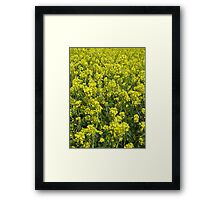 Yellow Sea Framed Print