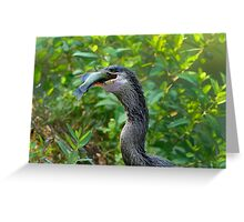 Anhinga's Successful Swim Greeting Card