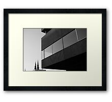 DOMINATE Framed Print