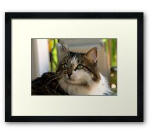 """I'm Mattie Girl, and Everyone Falls in Love With Me"" Framed Print"