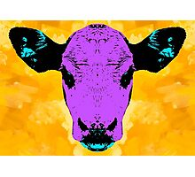 Purple Cow Photographic Print