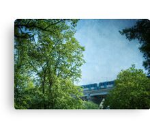 Behind the trees Canvas Print