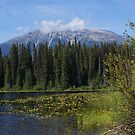 Owen Lake and Nadina Mountain by Ted Widen