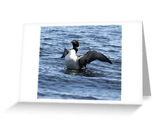 Loon 3 - Lake Muskoka Greeting Card