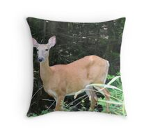 Deer - Lake Muskoka Throw Pillow