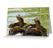 Smiling Turtles Greeting Card