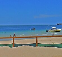 Beach activities at Tangalooma, Moreton Island, Qld, Australia (panorama) by Margaret  Hyde