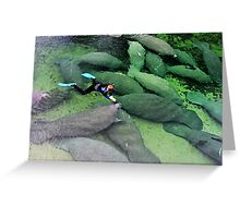 Save the Manatees, Blue Springs State Park Greeting Card