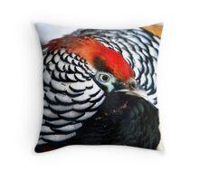 Amhearst pheasant Throw Pillow