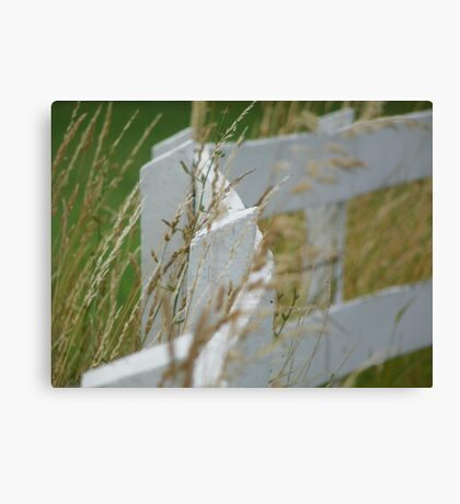 Curving White Fence Canvas Print