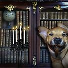 In The Library, With The Candlestick I Presume by Elizabeth Burton