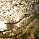 Golden Glass by Tim Richardson