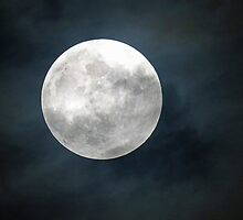 Full Moon! by jozi1