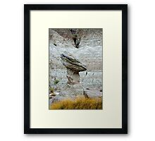 Badlands Sentinel Framed Print